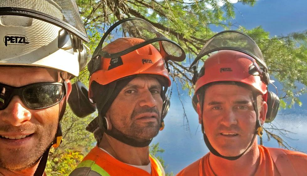 Kootenay Complete Tree Services Ltd | Arborist - Nelson BC